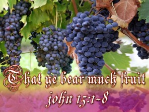 ye-bear-fruit-grapes-1-jpg1